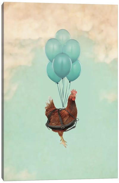 Chickens Can't Fly I Canvas Art Print