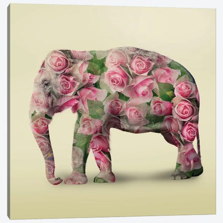 Elephant Flowers I Canvas Print #ZEP122} by Vin Zzep Canvas Wall Art