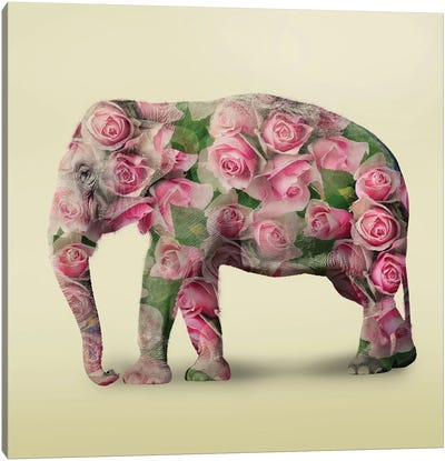 Elephant Flowers I Canvas Art Print