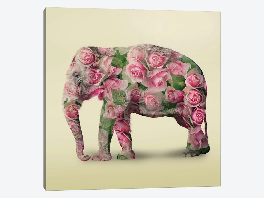 Elephant Flowers I by Vin Zzep 1-piece Canvas Art Print
