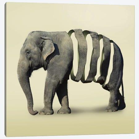Elephant Flowers II 3-Piece Canvas #ZEP123} by Vin Zzep Canvas Artwork