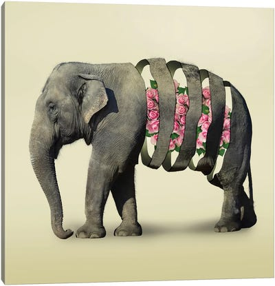 Elephant Flowers III Canvas Art Print