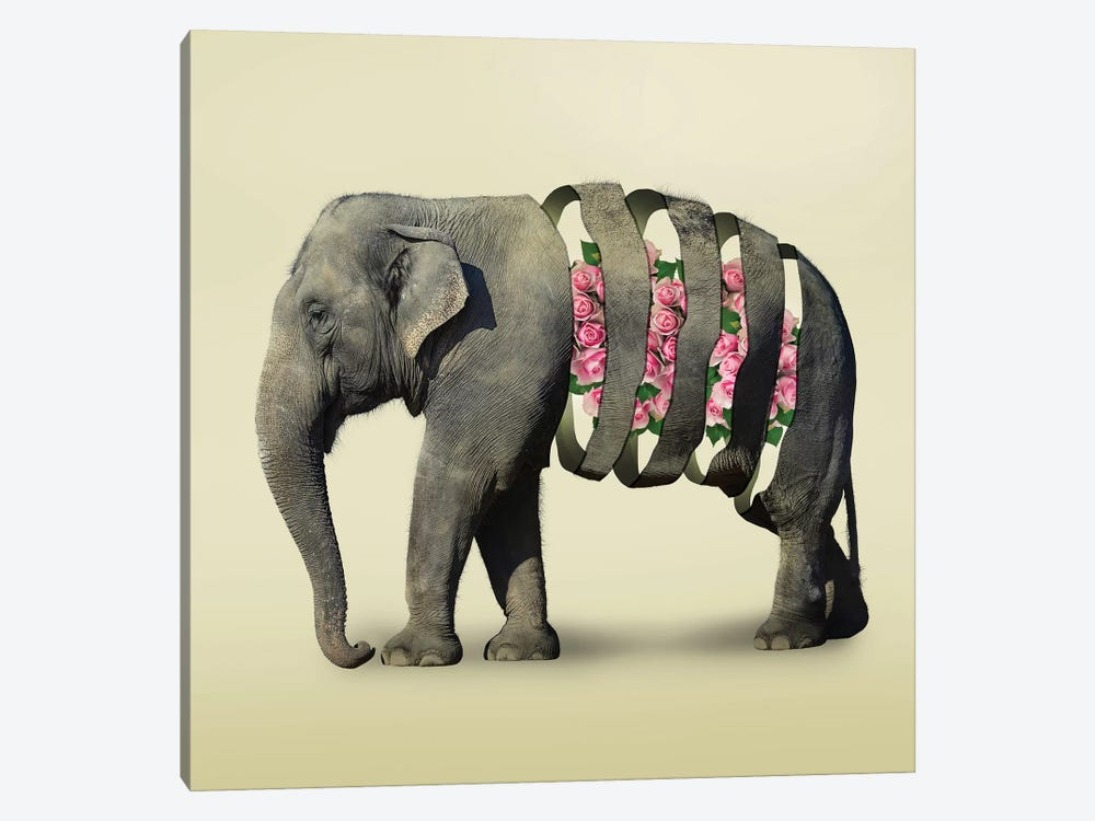 Elephant Flowers III 1-piece Canvas Print