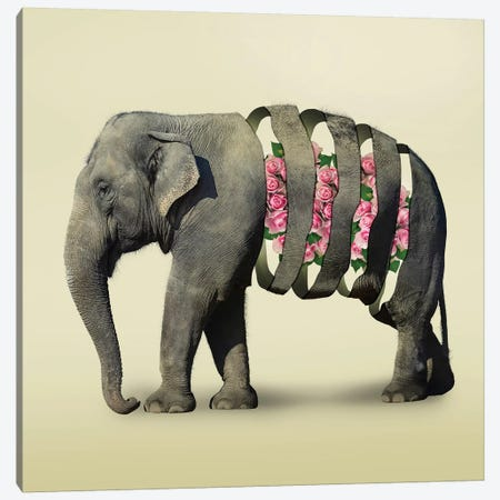 Elephant Flowers III Canvas Print #ZEP124} by Vin Zzep Canvas Art Print
