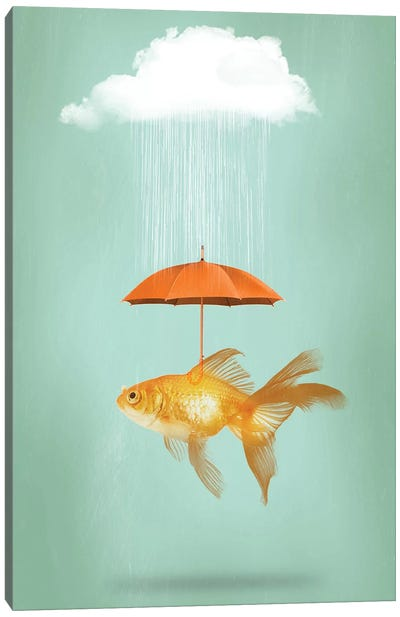 Fish Cover III Canvas Art Print