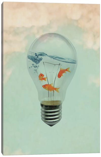 Ideas And Goldfish I Canvas Art Print