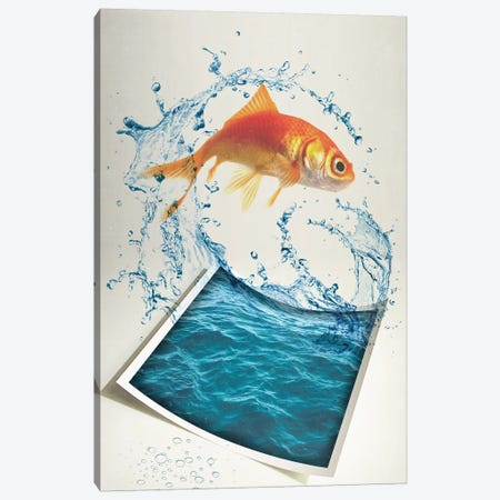 Jumping Goldfish II Canvas Print #ZEP146} by Vin Zzep Canvas Art Print