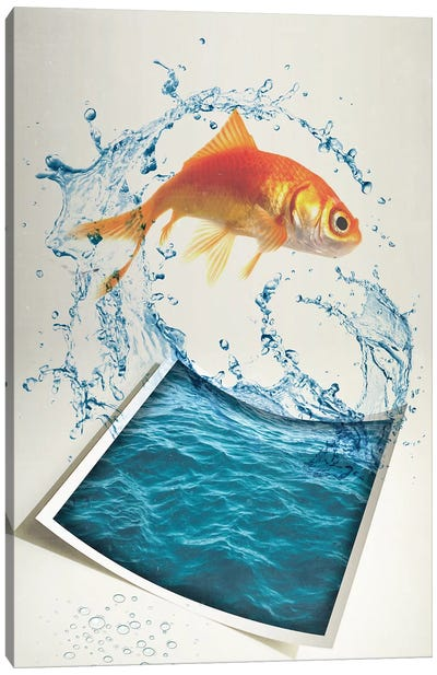 Jumping Goldfish II Canvas Art Print