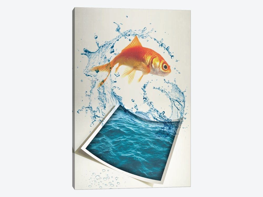 Jumping Goldfish II by Vin Zzep 1-piece Canvas Art Print