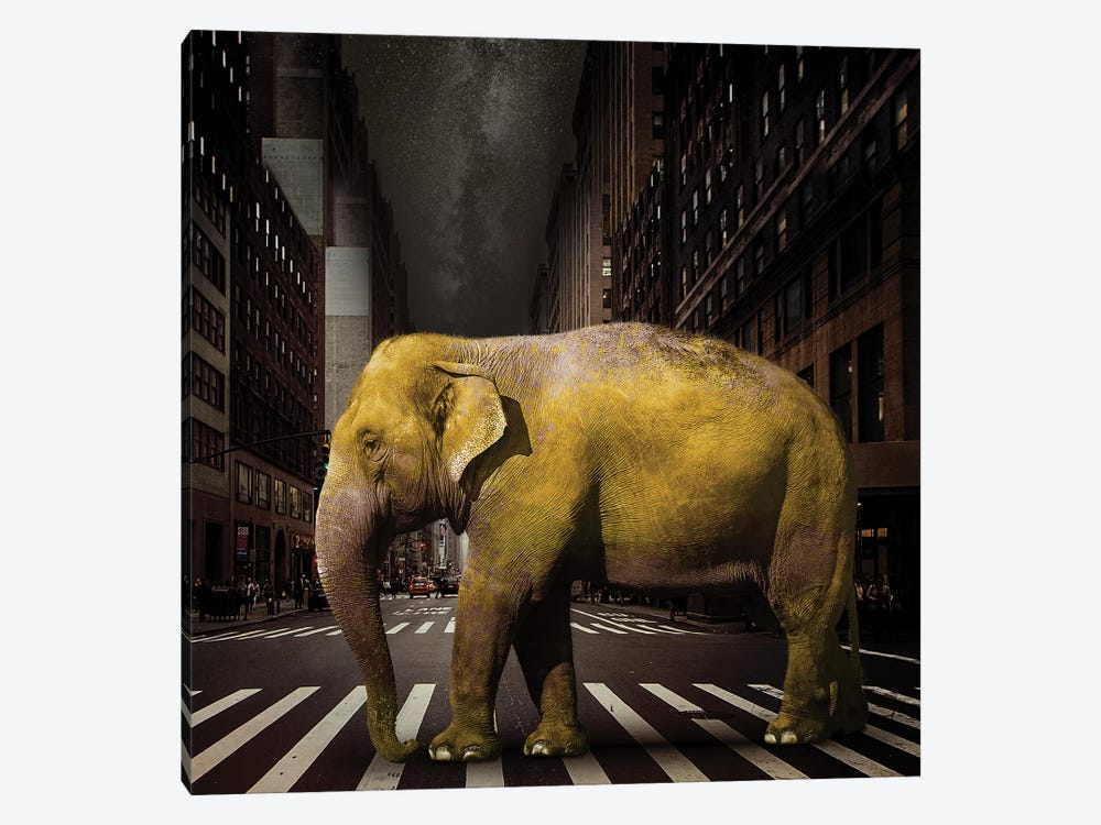 Elephant In NYC by Vin Zzep 1-piece Canvas Art Print