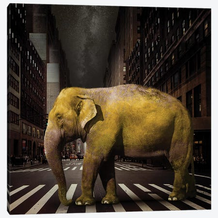 Elephant In NYC Canvas Print #ZEP15} by Vin Zzep Canvas Art