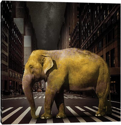 Elephant In NYC Canvas Art Print