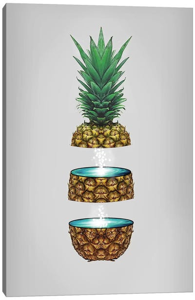 Pineapple Space Canvas Art Print