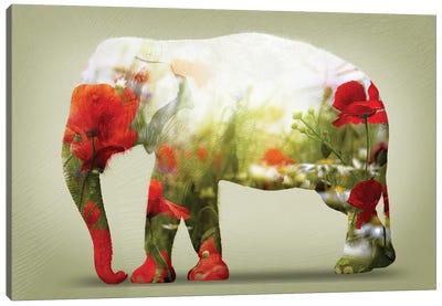 Poppy Canvas Art Print