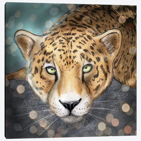 Snow Leopard Canvas Print #ZEP168} by Vin Zzep Canvas Art