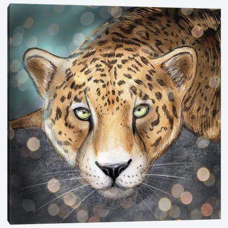 Snow Leopard Canvas Print #ZEP168} by Vin Zzep Canvas Art