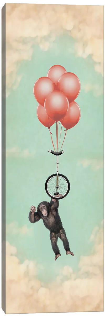 The Unicycle Incident III Canvas Art Print