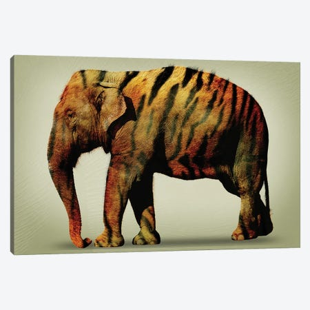 Tiger Elephant Canvas Print #ZEP182} by Vin Zzep Canvas Artwork