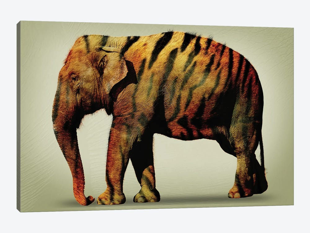 Tiger Elephant by Vin Zzep 1-piece Art Print