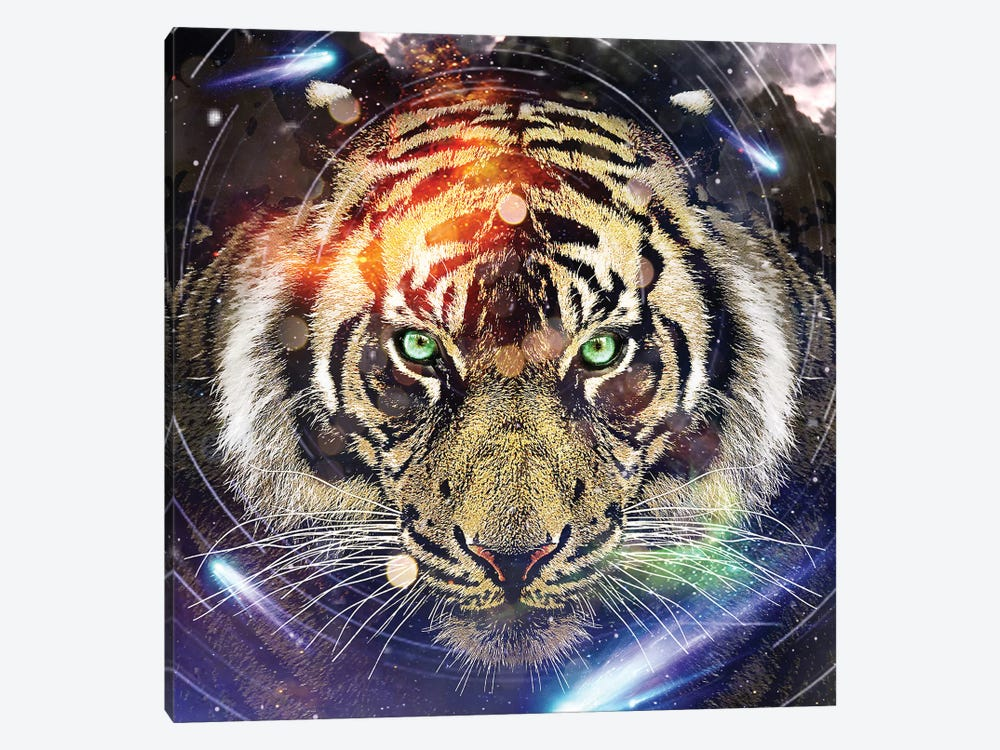 Tiger II by Vin Zzep 1-piece Canvas Artwork