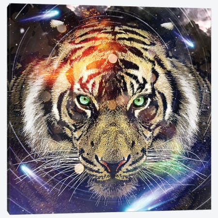 Tiger II Canvas Print #ZEP183} by Vin Zzep Canvas Art
