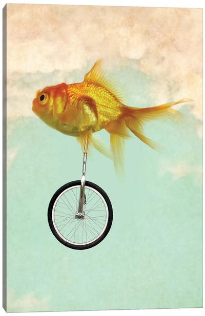 Unicycle Goldfish II Canvas Art Print
