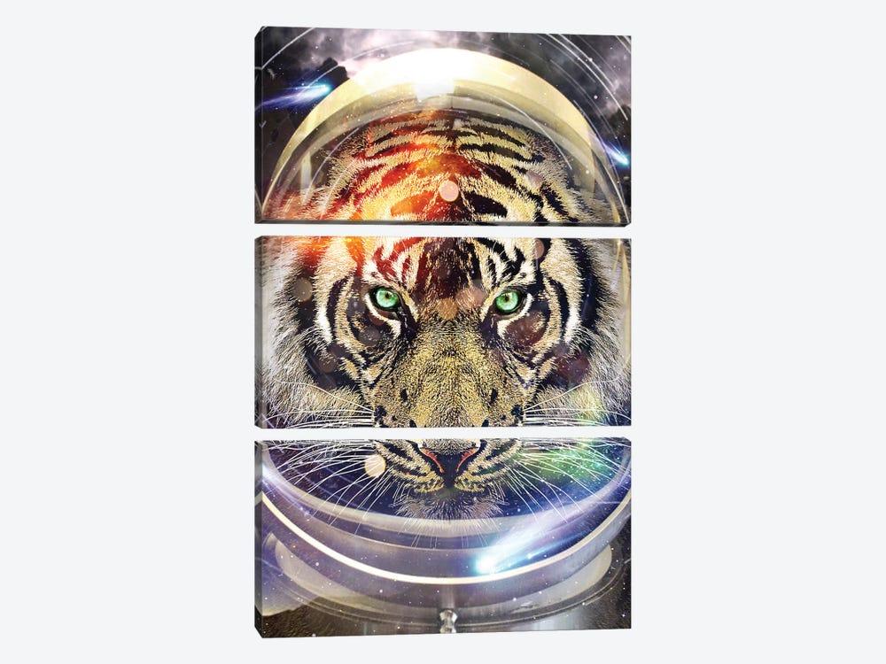 Astro Tiger by Vin Zzep 3-piece Canvas Print