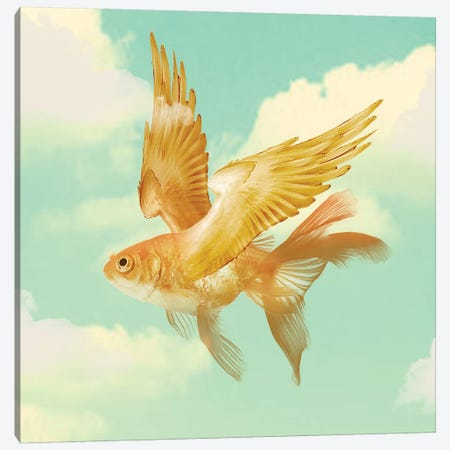 Flying Goldfish Canvas Print #ZEP22} by Vin Zzep Canvas Wall Art