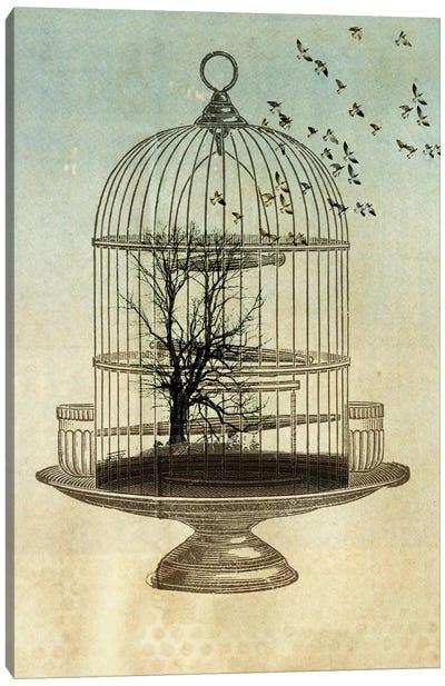Free Birds Canvas Art Print