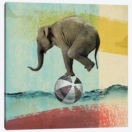 Balance Elephant Canvas Print #ZEP2} by Vin Zzep Canvas Art