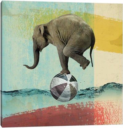 Balance Elephant Canvas Art Print