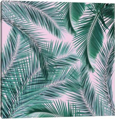 Musk Palms I Canvas Art Print