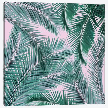 Musk Palms I Canvas Print #ZEP37} by Vin Zzep Canvas Wall Art
