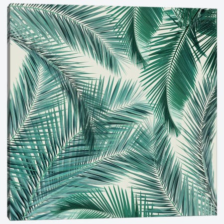 Palms II Canvas Print #ZEP47} by Vin Zzep Canvas Art Print