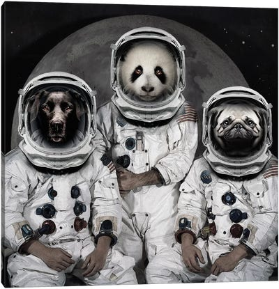 Astro Animals Canvas Art Print