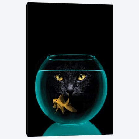Black Cat Goldfish Canvas Print #ZEP5} by Vin Zzep Art Print