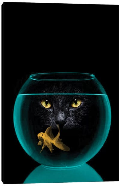 Black Cat Goldfish Canvas Art Print