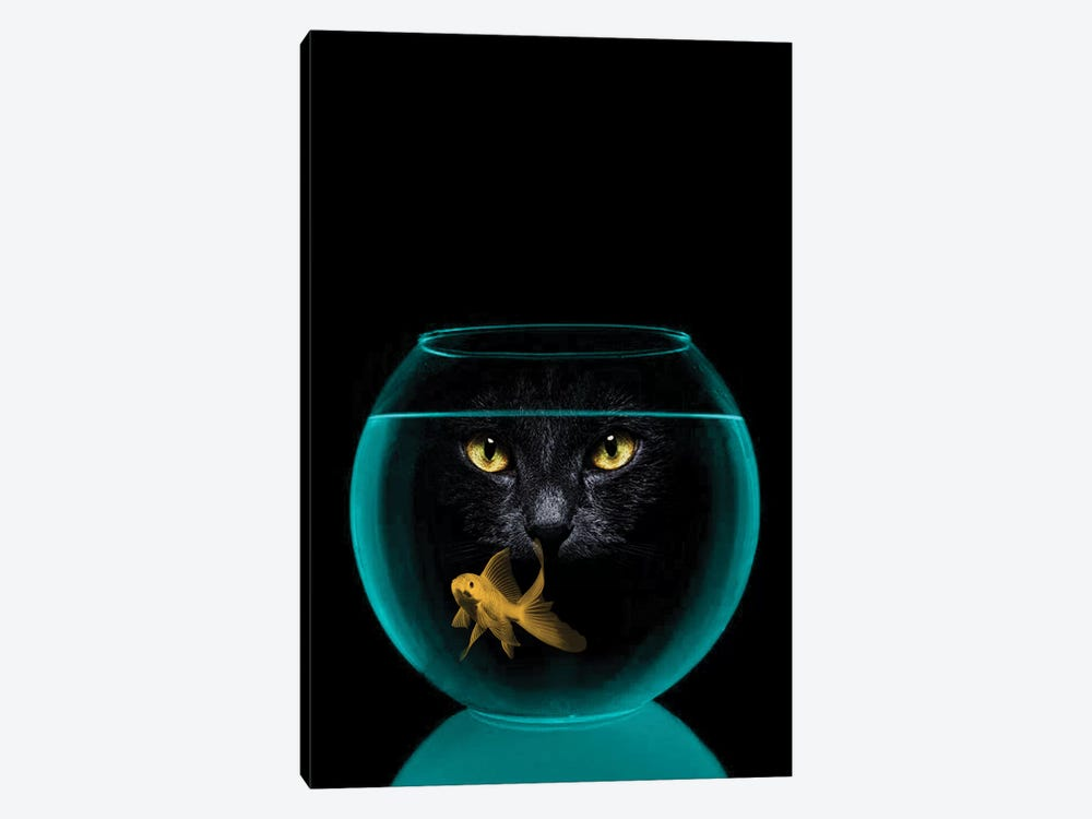 Black Cat Goldfish by Vin Zzep 1-piece Canvas Print
