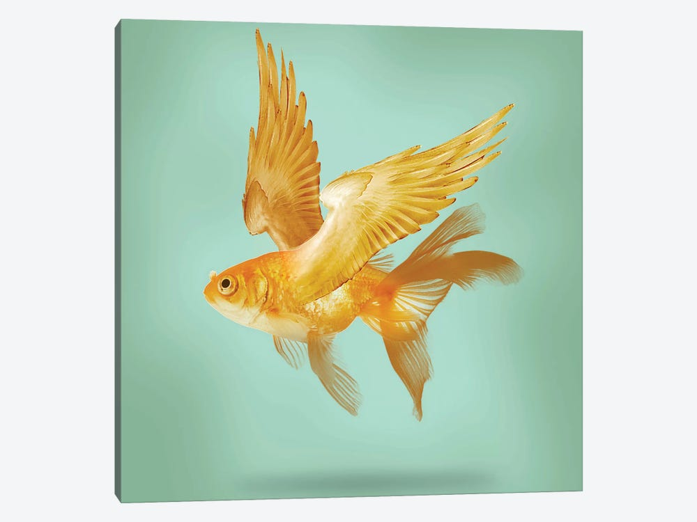 Flying Fish by Vin Zzep 1-piece Canvas Wall Art