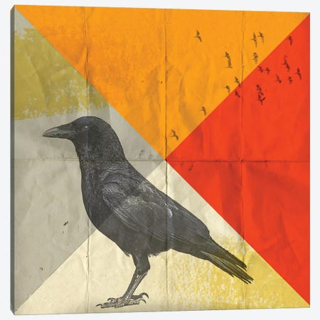 Crow Diamond I Canvas Print #ZEP7} by Vin Zzep Art Print