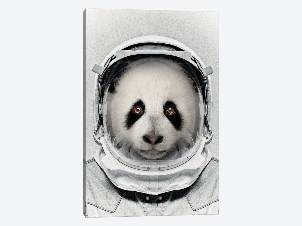 Panda Astro Bear by Vin Zzep 1-piece Canvas Artwork