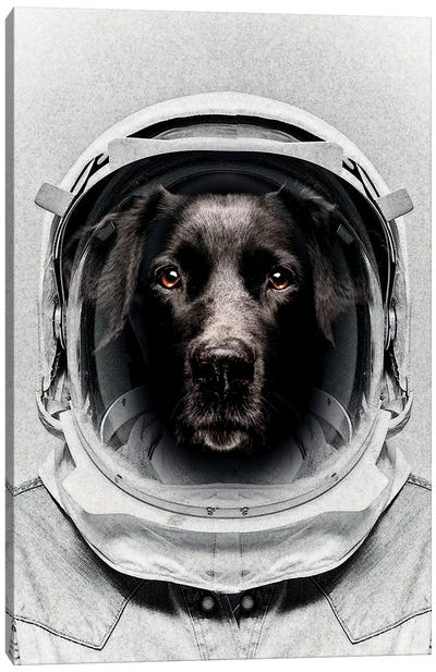 Pluto Astro Dog Canvas Art Print