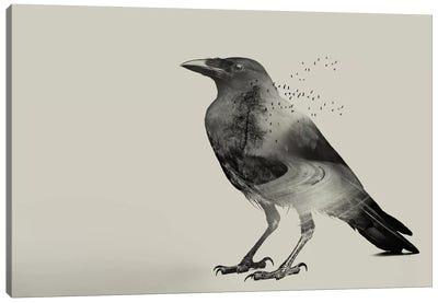 Raven Sky Canvas Art Print