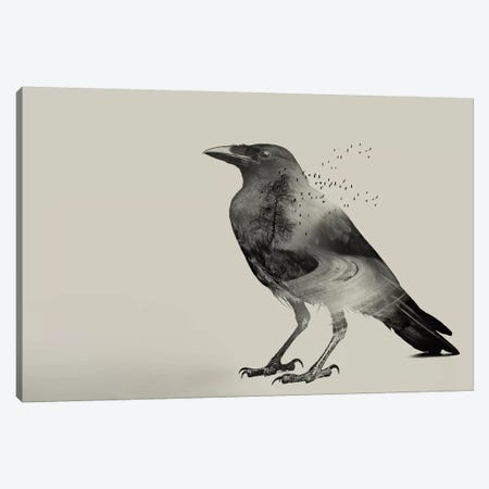 Raven Sky Canvas Print #ZEP96} by Vin Zzep Canvas Wall Art