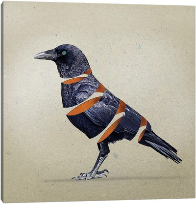 Raven Slice Canvas Art Print