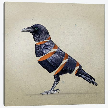 Raven Slice Canvas Print #ZEP97} by Vin Zzep Canvas Artwork