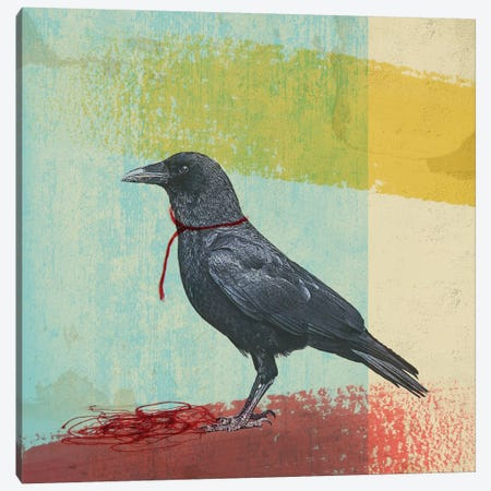 Crow Freedom Canvas Print #ZEP9} by Vin Zzep Canvas Art