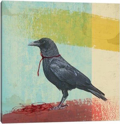 Crow Freedom Canvas Art Print
