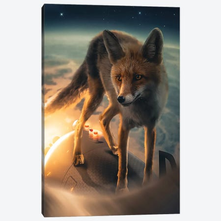 The Fox In Space Canvas Print #ZGA100} by Zenja Gammer Canvas Artwork