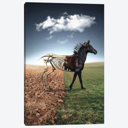 The Skeleton Horse Canvas Print #ZGA104} by Zenja Gammer Art Print